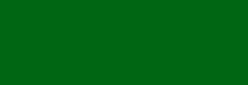 Faber Castell Lápices Polychromos - Emerald Green