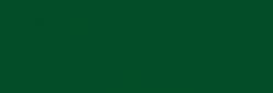 Faber Castell Lápices Polychromos - Chrome Oxide Green F