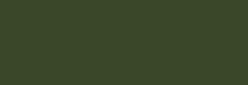 Faber Castell Lápices Polychromos - Juniper Green