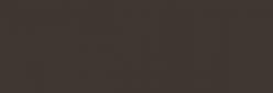 Faber Castell Lápices Polychromos - Cold Gray V