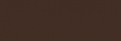 Faber Castell Lápices Polychromos - Dark Sepia