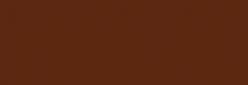 Faber Castell Lápices Polychromos - Burnt Siena