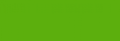 Faber Castell Lápices Polychromos - Grass Green