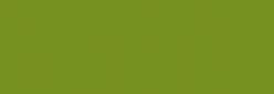 Faber Castell Lápices Polychromos - Earth Green Yellowis