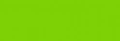 Faber Castell Lápices Polychromos - Light Green