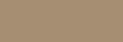 Faber Castell Lápices Polychromos - Warm Gray II