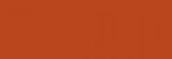 Faber Castell Lápices Polychromos - Terracotta