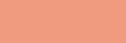 Faber Castell Lápices Polychromos - Light Flesh