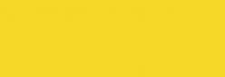 Faber Castell Lápices Polychromos - Light Cadmium Yellow