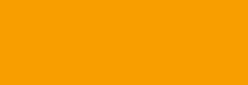 Faber Castell Lápices Polychromos - Dark Cadmium Yellow