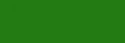 Lápiz Grafito Acuarelable Aquamonolith Cretacolor - Moss Green Dark