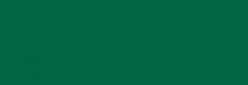 Acuarela Van Gogh Pastillas 1/2 Godet - Verde esmeralda