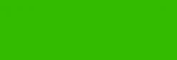 Rotulador Pincel Pentel Fudepen Brush GFL - Verde
