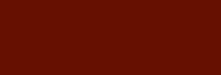 Rotulador Pincel Pentel Fudepen Brush GFL - Sepia