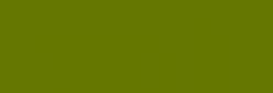 Rotulador Pincel Pentel Fudepen Brush GFL - Verde Oliva