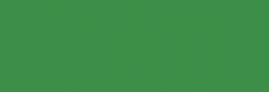 Copic Sketch Rotulador - Spectrum Green