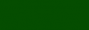 Copic Ciao Rotulador - Pine Tree Green