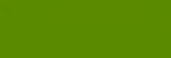 Copic Ciao Rotulador - Moss