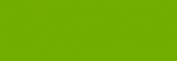 Copic Ciao Rotulador - New Leaf