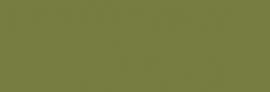 Copic Ciao Rotulador - Grayish Olive