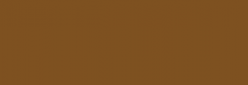 Copic Ciao Rotulador - Dark Brown