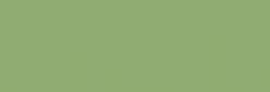 Copic Ciao Rotulador - Pea Green
