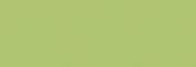 Copic Ciao Rotulador - Spring Dim Green
