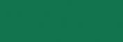 ProMarker Winsor&Newton Rotuladores - Green