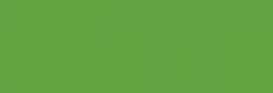 ProMarker Winsor&Newton Rotuladores - Leaf Green