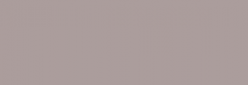 ProMarker Winsor&Newton Rotuladores - Warm Gray 2