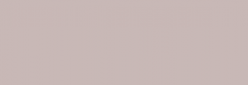 ProMarker Winsor&Newton Rotuladores - Warm Gray 1