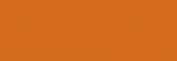 ProMarker Winsor&Newton Rotuladores - Raw Sienna