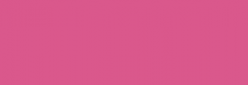 ProMarker Winsor&Newton Rotuladores - Dusky Rose