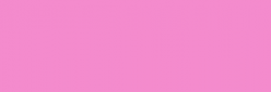 ProMarker Winsor&Newton Rotuladores - Blossom