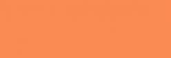 ProMarker Winsor&Newton Rotuladores - Apricot