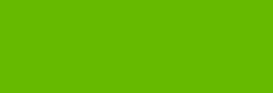 Rotulador Poska PC5M - Verde