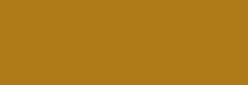 Sakura Rotulador Acuarelable Koi Coloring - Dark Brown 110