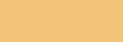Sakura Rotulador Acuarelable Koi Coloring - Woody Brown 40