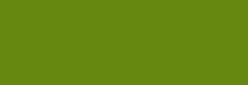 Acuarela Van Gogh Pastillas 1/2 Godet - Verde vejiga