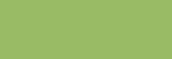 Acrílicos Vallejo Studio 200 ml - Verde chromium palid