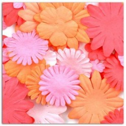 Surtido Flores Toga AA25